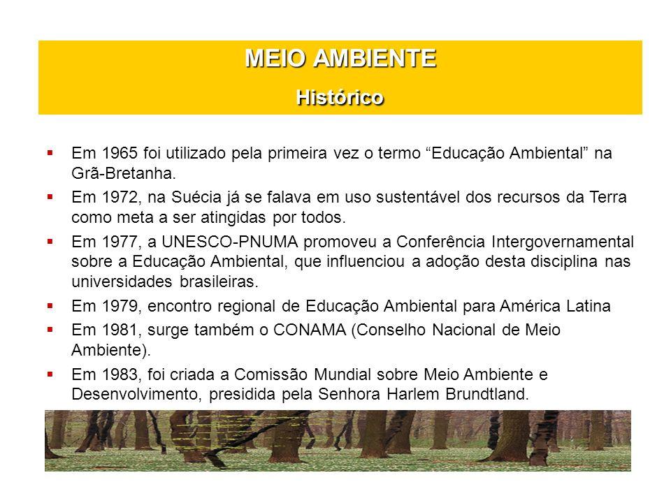 MEIO AMBIENTE Histórico Em 1965 foi utilizado pela primeira vez o termo Educação Ambiental na Grã-Bretanha. Em 1972, na Suécia já se falava em uso sus