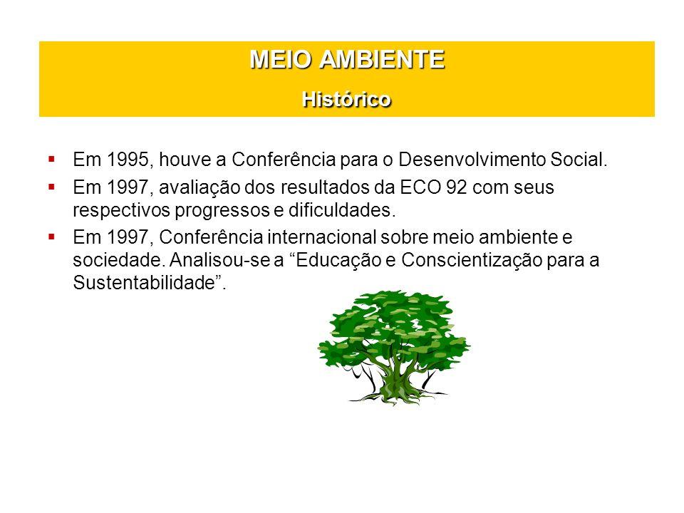 MEIO AMBIENTE Histórico Em 1995, houve a Conferência para o Desenvolvimento Social. Em 1997, avaliação dos resultados da ECO 92 com seus respectivos p