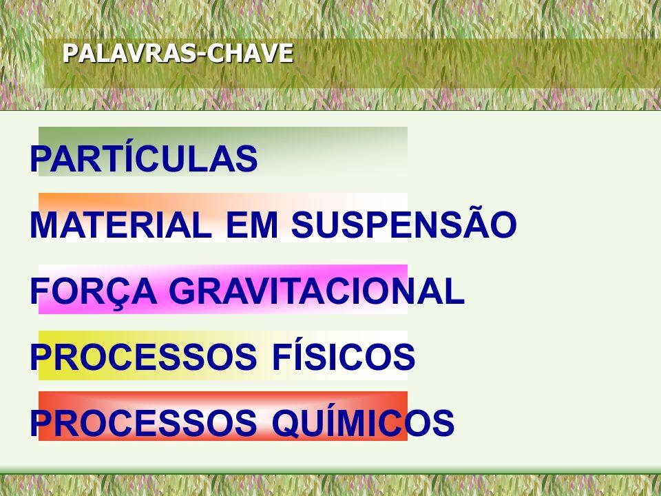 PALAVRAS-CHAVE PARTÍCULAS MATERIAL EM SUSPENSÃO FORÇA GRAVITACIONAL PROCESSOS FÍSICOS PROCESSOS QUÍMICOS