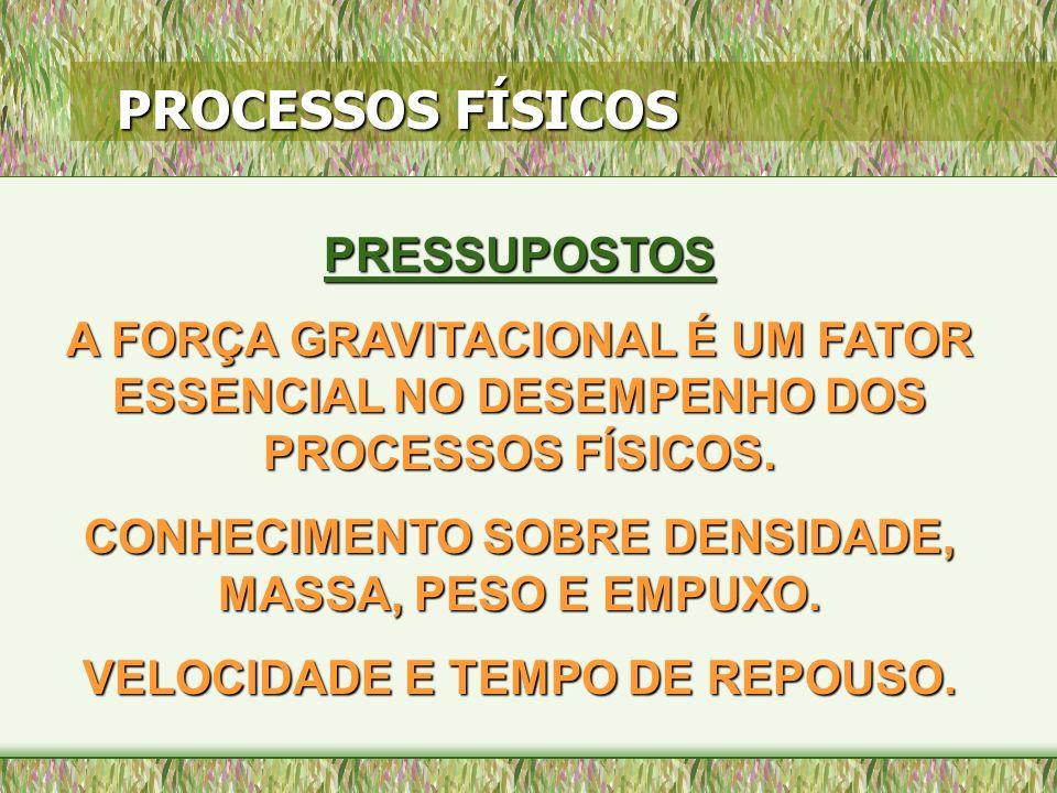 PESO E EMPUXO FISICAMENTE, PESO É SINÔNIMO DE FORÇA GRAVITACIONAL.