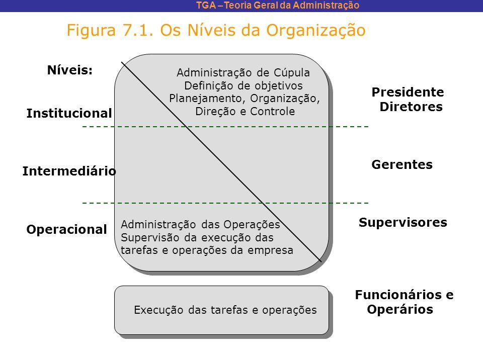 TGA –Teoria Geral da Administração Níveis: Institucional Intermediário Operacional Administração de Cúpula Definição de objetivos Planejamento, Organi