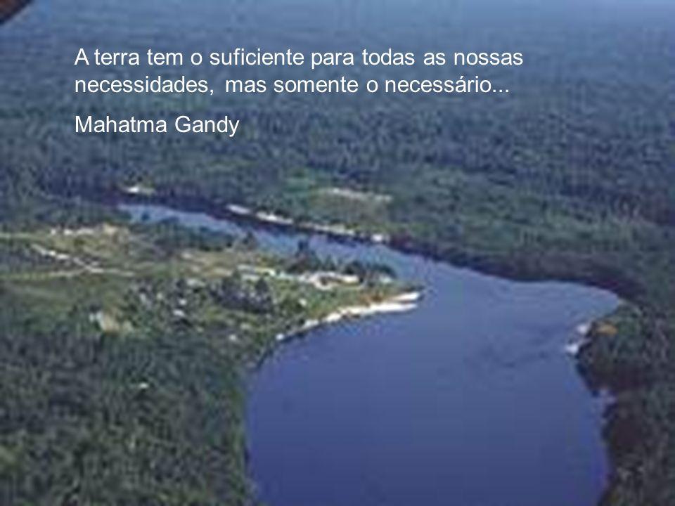 Os rios são nossos irmãos, saciam nossa sede. Os rios carregam nossas canoas e alimentam nossas crianças. Se lhes vendermos nossa terra, vocês devem l