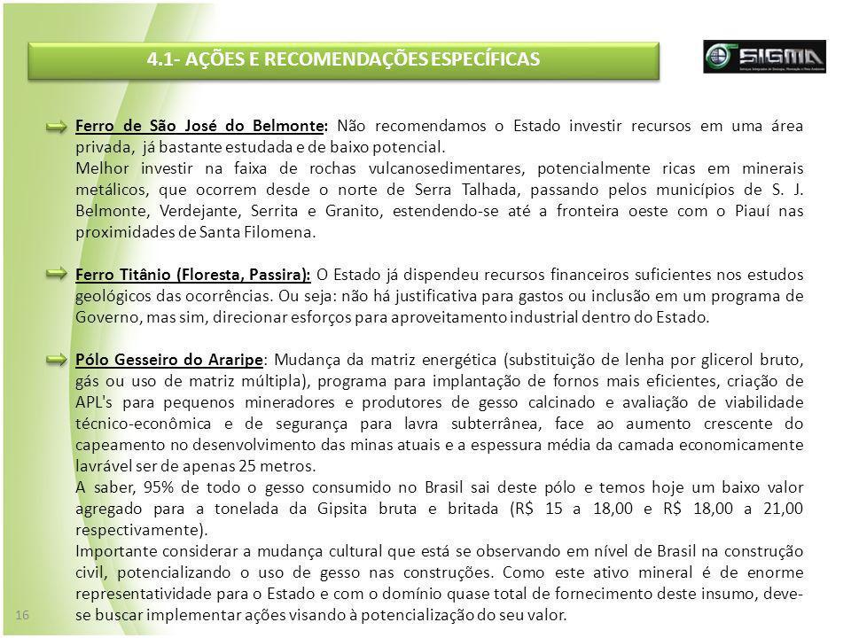 4.1- AÇÕES E RECOMENDAÇÕES ESPECÍFICAS Ferro de São José do Belmonte: Não recomendamos o Estado investir recursos em uma área privada, já bastante est