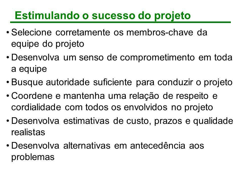 Estimulando o sucesso do projeto Selecione corretamente os membros-chave da equipe do projeto Desenvolva um senso de comprometimento em toda a equipe
