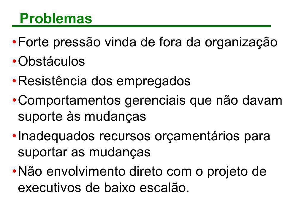 Problemas Forte pressão vinda de fora da organização Obstáculos Resistência dos empregados Comportamentos gerenciais que não davam suporte às mudanças