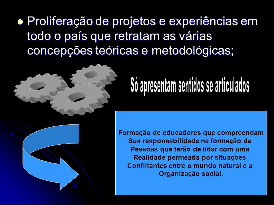 Proliferação de projetos e experiências em todo o país que retratam as várias concepções teóricas e metodológicas; Proliferação de projetos e experiên