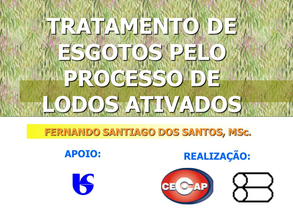 TRATAMENTO DE ESGOTOS PELO PROCESSO DE LODOS ATIVADOS FERNANDO SANTIAGO DOS SANTOS, MSc. APOIO: REALIZAÇÃO: