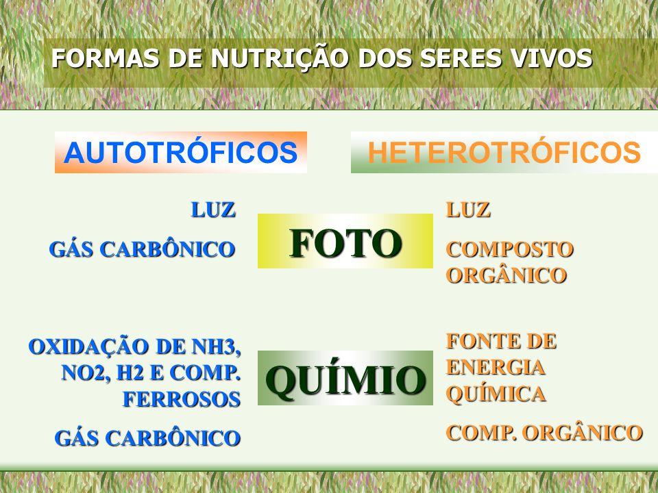 FORMAS DE NUTRIÇÃO DOS SERES VIVOS AUTOTRÓFICOSHETEROTRÓFICOS FOTO QUÍMIO LUZ GÁS CARBÔNICO LUZ COMPOSTO ORGÂNICO OXIDAÇÃO DE NH3, NO2, H2 E COMP. FER