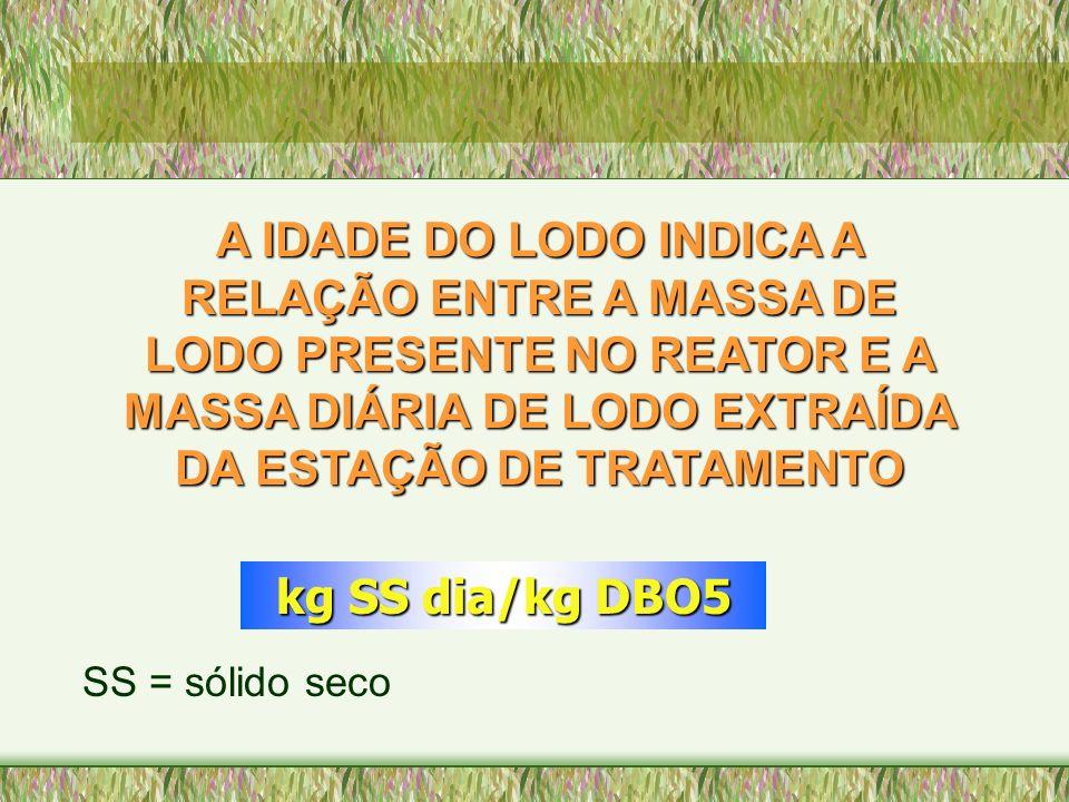 A IDADE DO LODO INDICA A RELAÇÃO ENTRE A MASSA DE LODO PRESENTE NO REATOR E A MASSA DIÁRIA DE LODO EXTRAÍDA DA ESTAÇÃO DE TRATAMENTO kg SS dia/kg DBO5