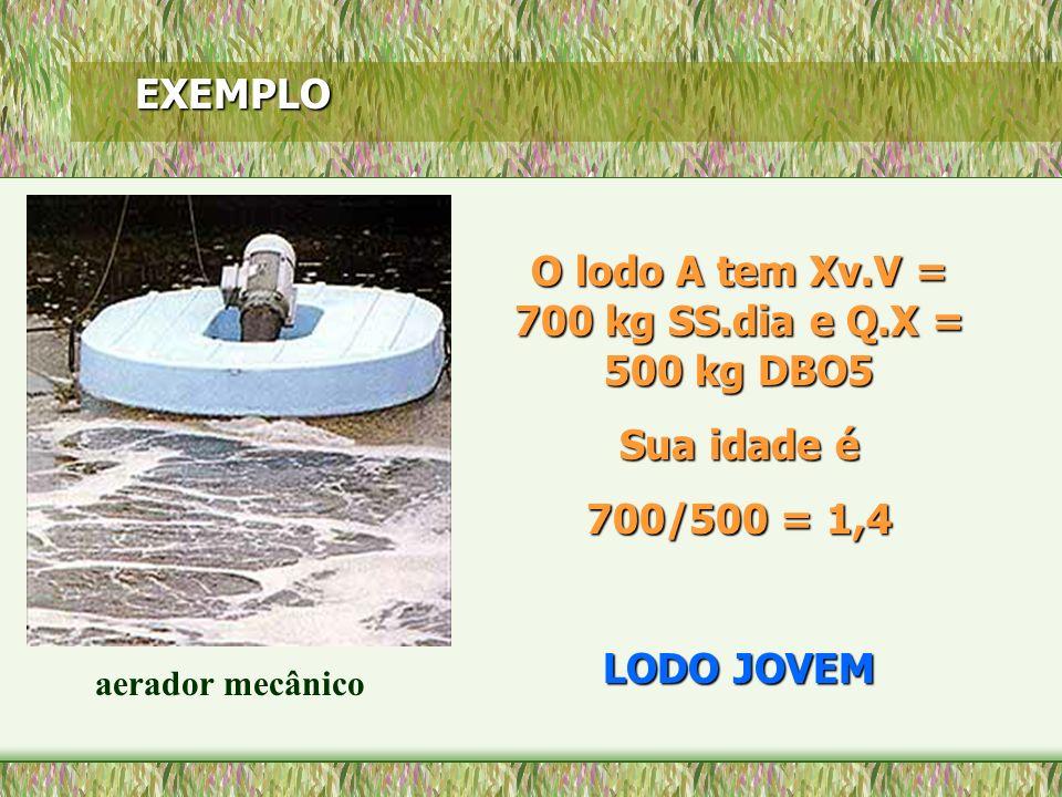 EXEMPLO aerador mecânico O lodo A tem Xv.V = 700 kg SS.dia e Q.X = 500 kg DBO5 Sua idade é 700/500 = 1,4 LODO JOVEM