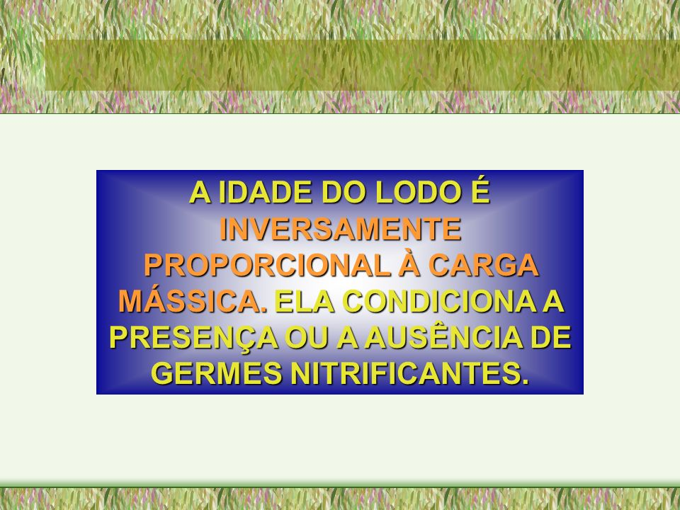 A IDADE DO LODO É INVERSAMENTE PROPORCIONAL À CARGA MÁSSICA. MÁSSICA. ELA CONDICIONA A PRESENÇA OU A AUSÊNCIA DE GERMES NITRIFICANTES.