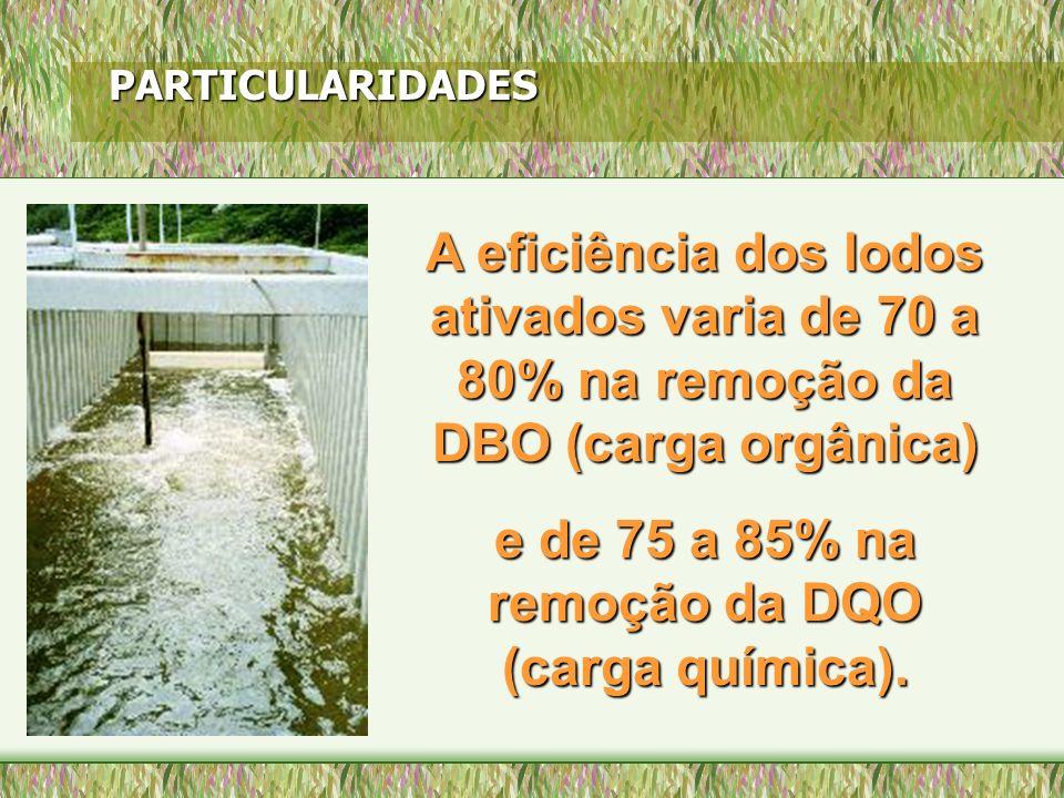 PARTICULARIDADES A eficiência dos lodos ativados varia de 70 a 80% na remoção da DBO (carga orgânica) e de 75 a 85% na remoção da DQO (carga química).