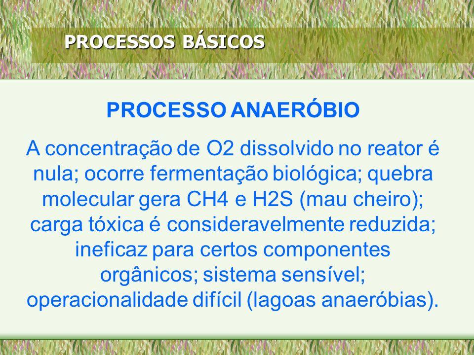 PROCESSOS BÁSICOS PROCESSO ANAERÓBIO A concentração de O2 dissolvido no reator é nula; ocorre fermentação biológica; quebra molecular gera CH4 e H2S (