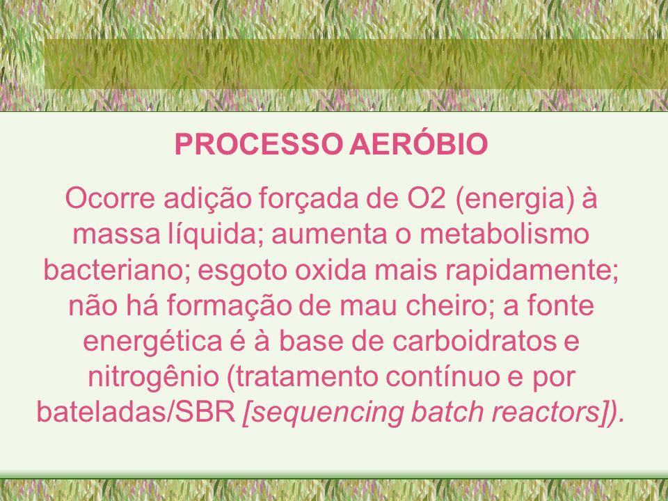 PROCESSO AERÓBIO Ocorre adição forçada de O2 (energia) à massa líquida; aumenta o metabolismo bacteriano; esgoto oxida mais rapidamente; não há formaç