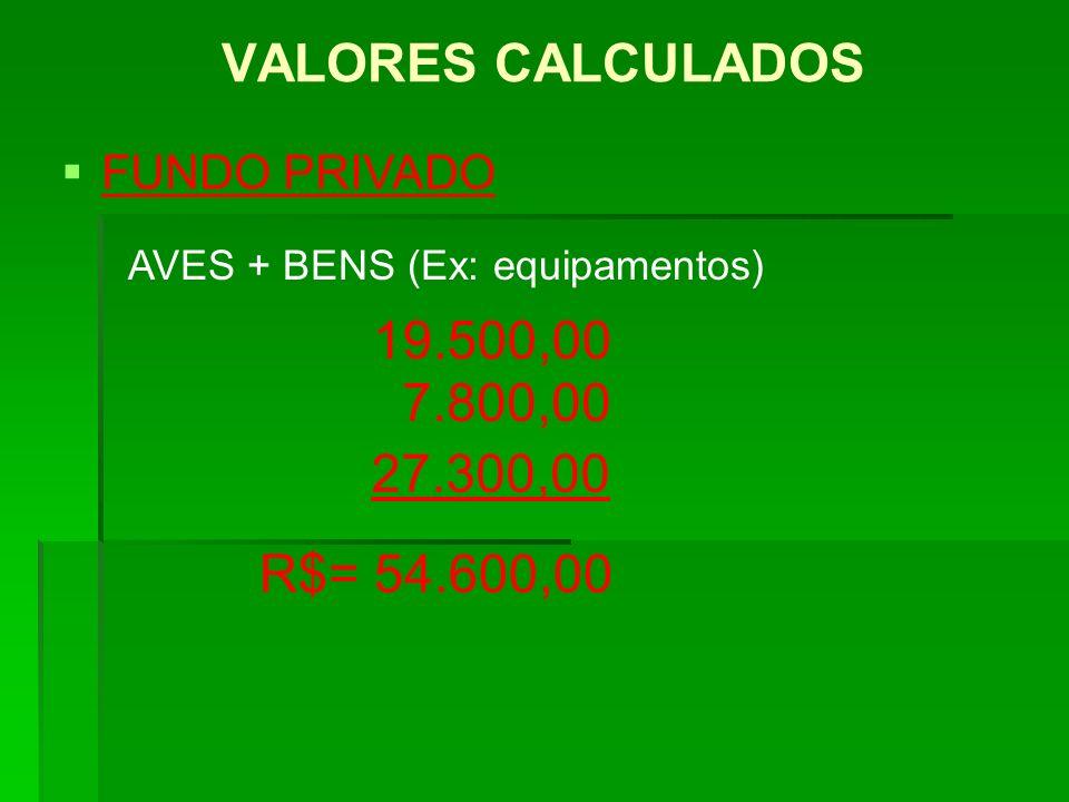 VALORES CALCULADOS FUNDO PRIVADO 27.300,00 19.500,00 AVES + BENS (Ex: equipamentos) 7.800,00 R$= 54.600,00