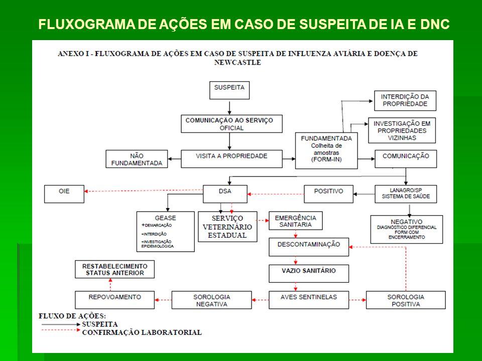 FLUXOGRAMA DE AÇÕES EM CASO DE SUSPEITA DE IA E DNC