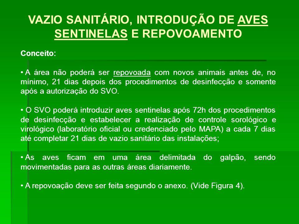 VAZIO SANITÁRIO, INTRODUÇÃO DE AVES SENTINELAS E REPOVOAMENTO Conceito: A área não poderá ser repovoada com novos animais antes de, no mínimo, 21 dias