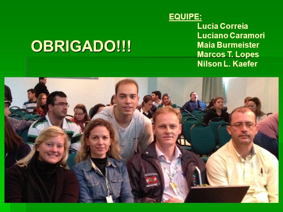 EQUIPE: Lucia Correia Luciano Caramori Maia Burmeister Marcos T. Lopes Nilson L. Kaefer OBRIGADO!!!