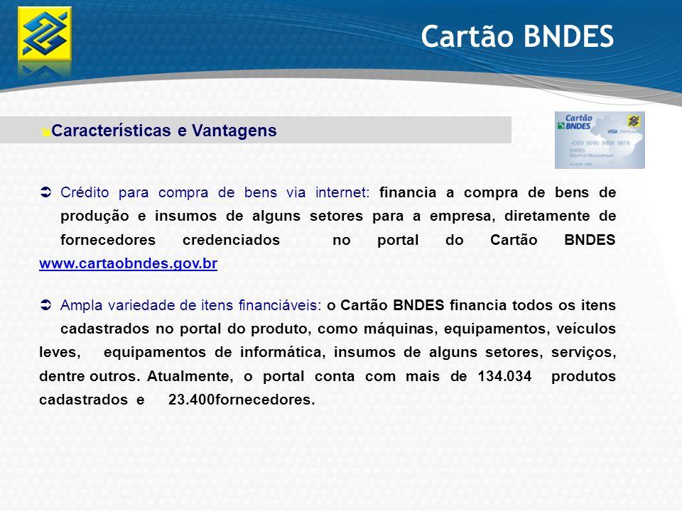 Cartão BNDES Crédito para compra de bens via internet: financia a compra de bens de produção e insumos de alguns setores para a empresa, diretamente d