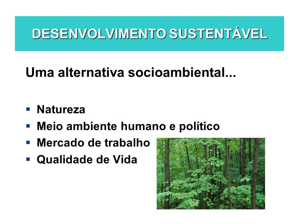 DESENVOLVIMENTO SUSTENTÁVEL Uma alternativa socioambiental... Natureza Meio ambiente humano e político Mercado de trabalho Qualidade de Vida