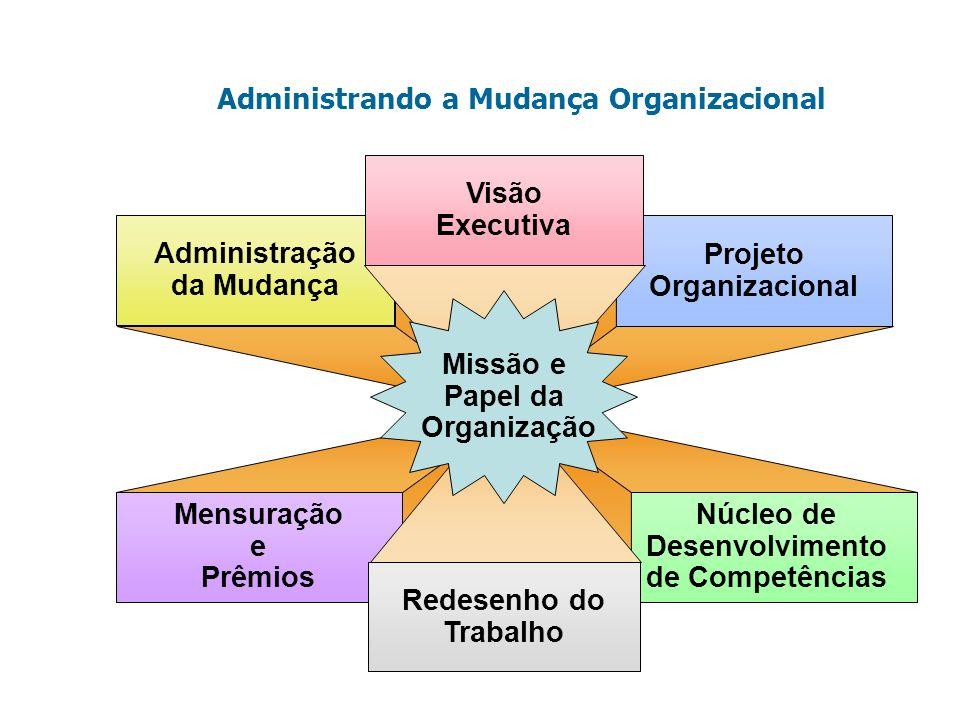 Administrando a Mudança Organizacional Administração da Mudança Mensuração e Prêmios Projeto Organizacional Núcleo de Desenvolvimento de Competências