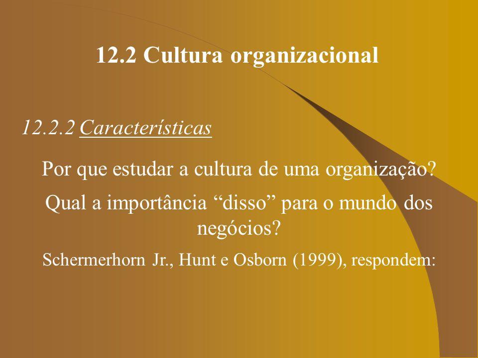 12.2 Cultura organizacional 12.2.2 Características Por que estudar a cultura de uma organização? Qual a importância disso para o mundo dos negócios? S