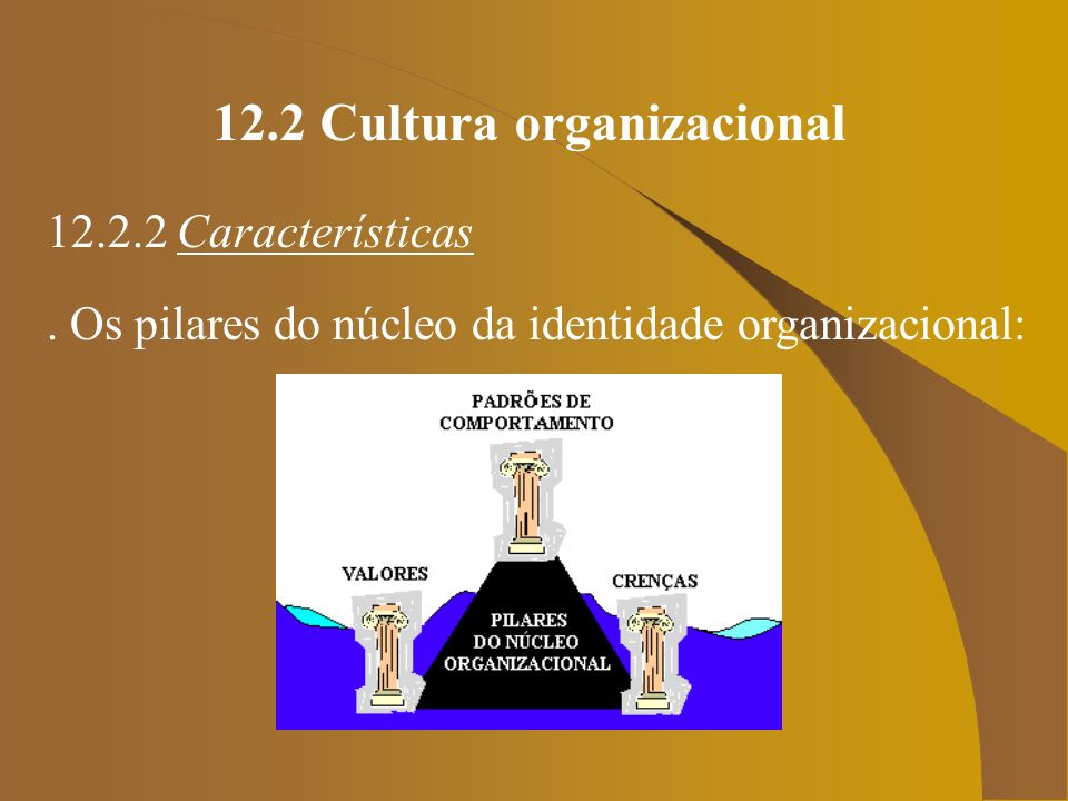 12.2 Cultura organizacional 12.2.2 Características. Os pilares do núcleo da identidade organizacional:
