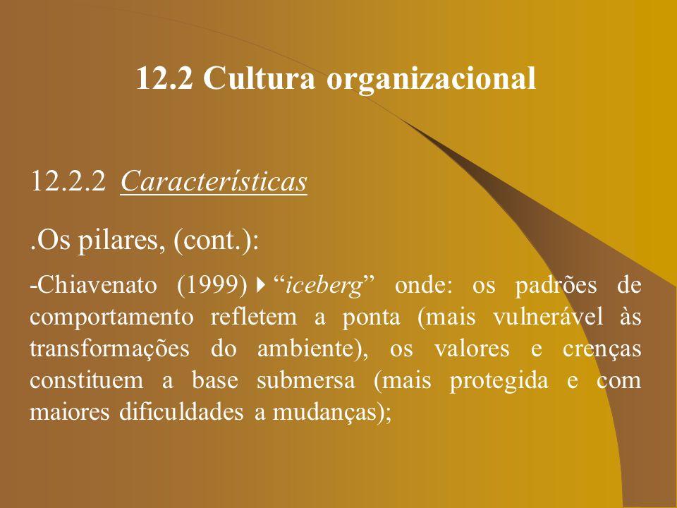 12.2 Cultura organizacional 12.2.2 Características.Os pilares, (cont.): -Chiavenato (1999)iceberg onde: os padrões de comportamento refletem a ponta (