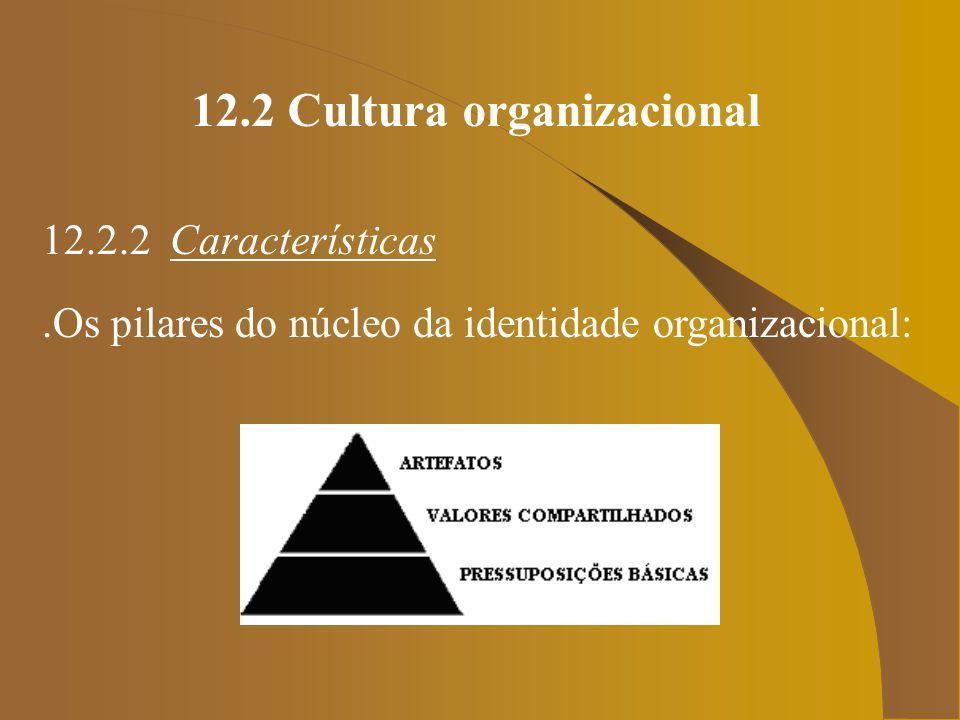 12.2 Cultura organizacional 12.2.2 Características.Os pilares do núcleo da identidade organizacional: