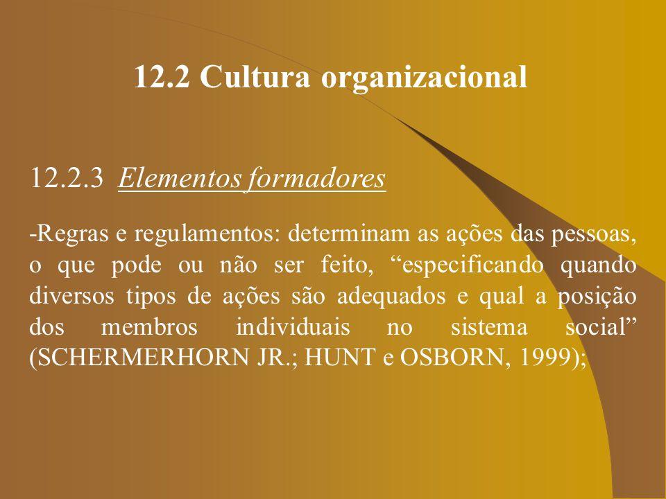 12.2 Cultura organizacional 12.2.3 Elementos formadores -Regras e regulamentos: determinam as ações das pessoas, o que pode ou não ser feito, especifi