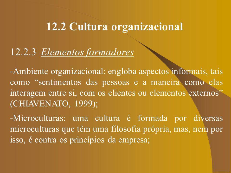 12.2 Cultura organizacional 12.2.3 Elementos formadores -Ambiente organizacional: engloba aspectos informais, tais como sentimentos das pessoas e a ma