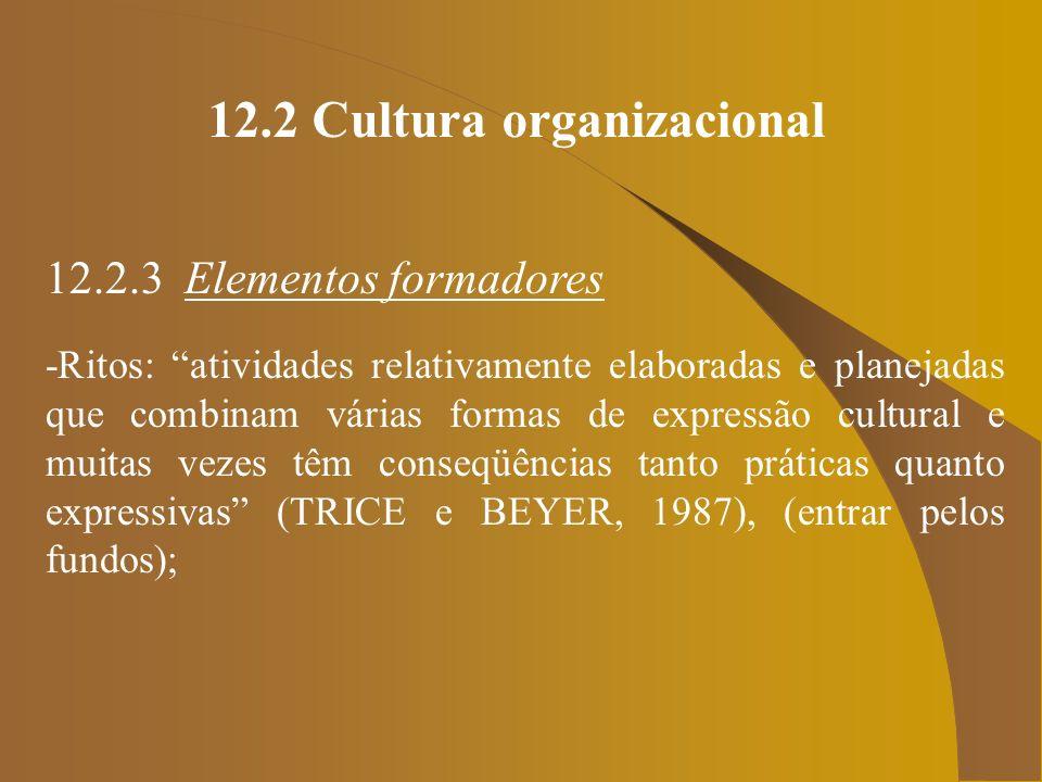12.2 Cultura organizacional 12.2.3 Elementos formadores -Ritos: atividades relativamente elaboradas e planejadas que combinam várias formas de express