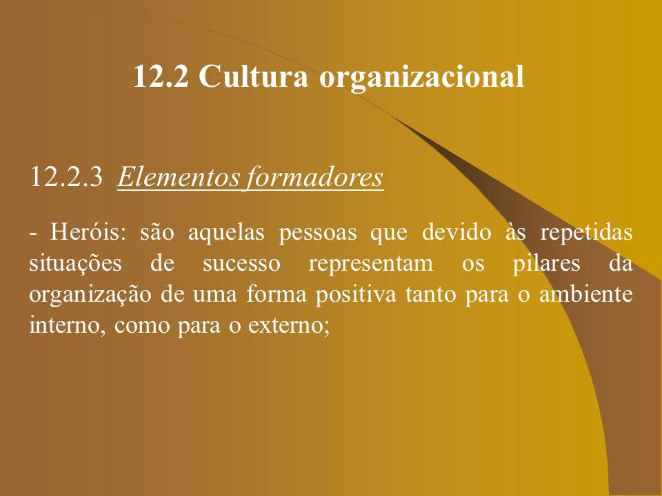 12.2 Cultura organizacional 12.2.3 Elementos formadores - Heróis: são aquelas pessoas que devido às repetidas situações de sucesso representam os pila