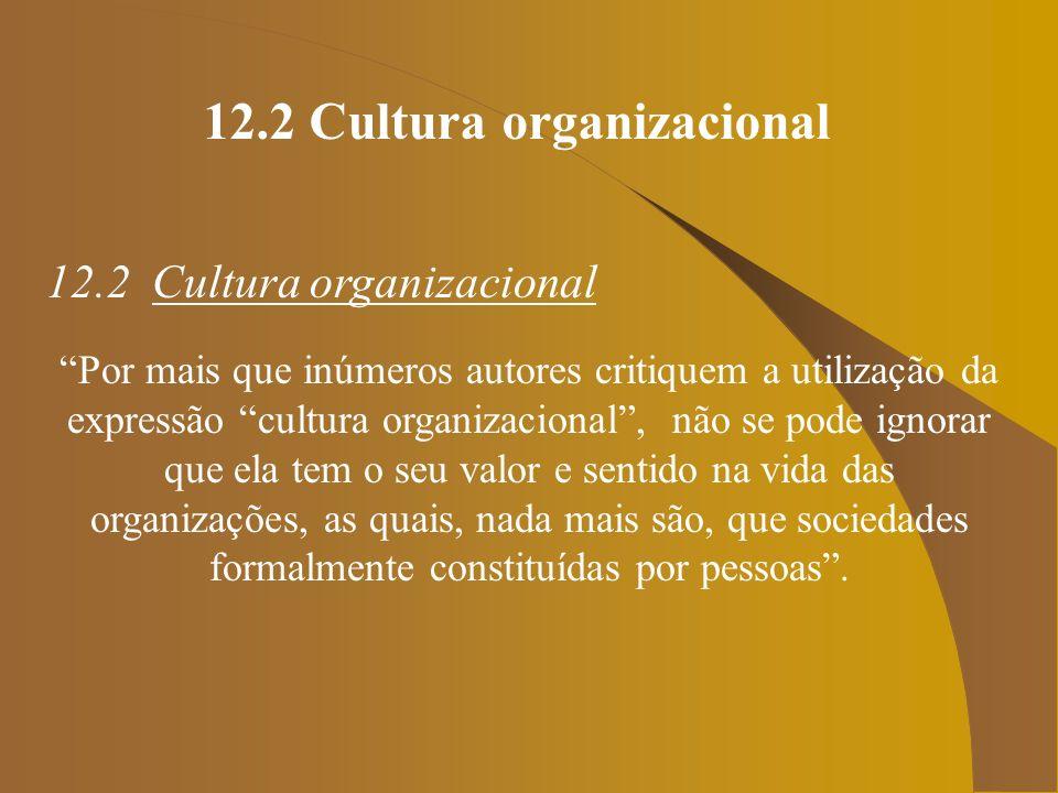 12.2 Cultura organizacional 12.2 Cultura organizacional Por mais que inúmeros autores critiquem a utilização da expressão cultura organizacional, não