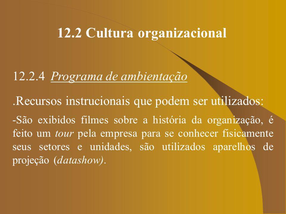 12.2 Cultura organizacional 12.2.4 Programa de ambientação.Recursos instrucionais que podem ser utilizados: -São exibidos filmes sobre a história da o