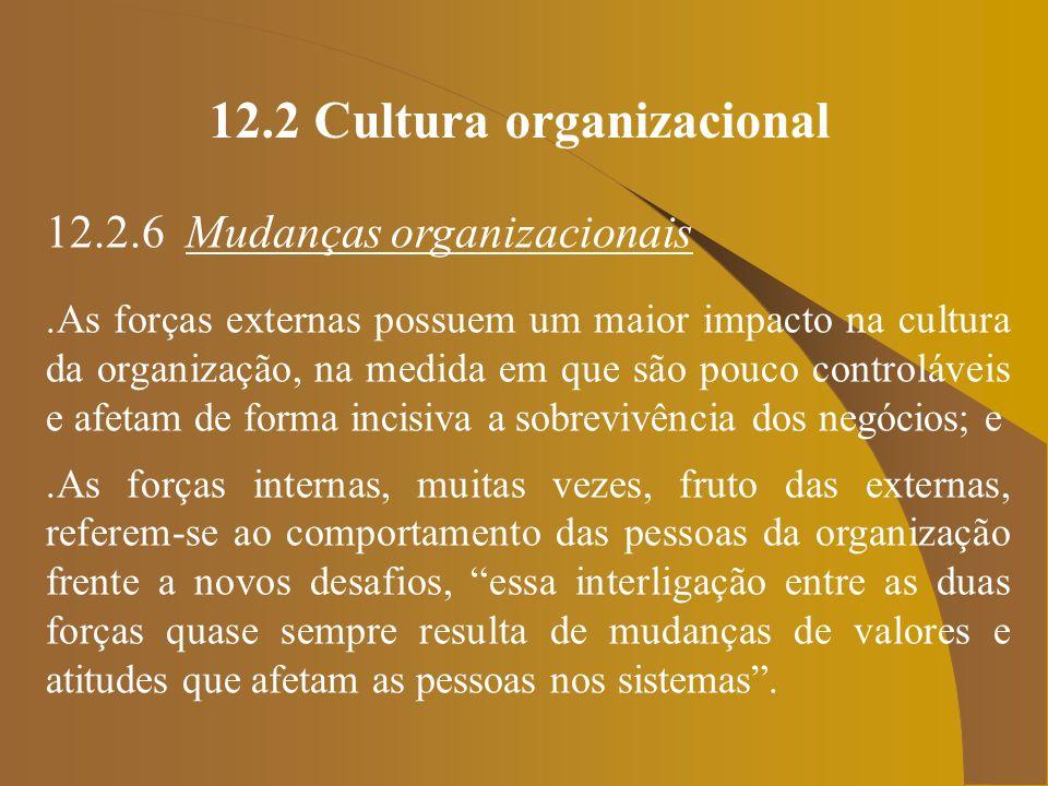 12.2 Cultura organizacional 12.2.6 Mudanças organizacionais.As forças externas possuem um maior impacto na cultura da organização, na medida em que sã