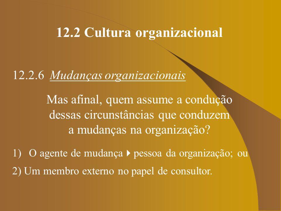 12.2 Cultura organizacional 12.2.6 Mudanças organizacionais Mas afinal, quem assume a condução dessas circunstâncias que conduzem a mudanças na organi