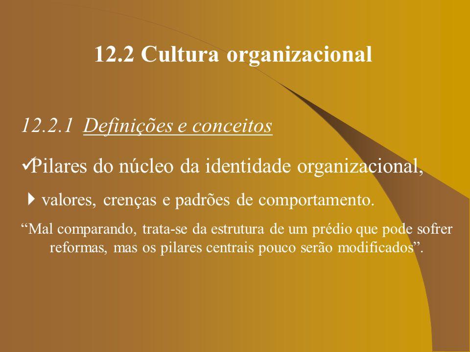 12.2 Cultura organizacional 12.2.1 Definições e conceitos Pilares do núcleo da identidade organizacional, valores, crenças e padrões de comportamento.