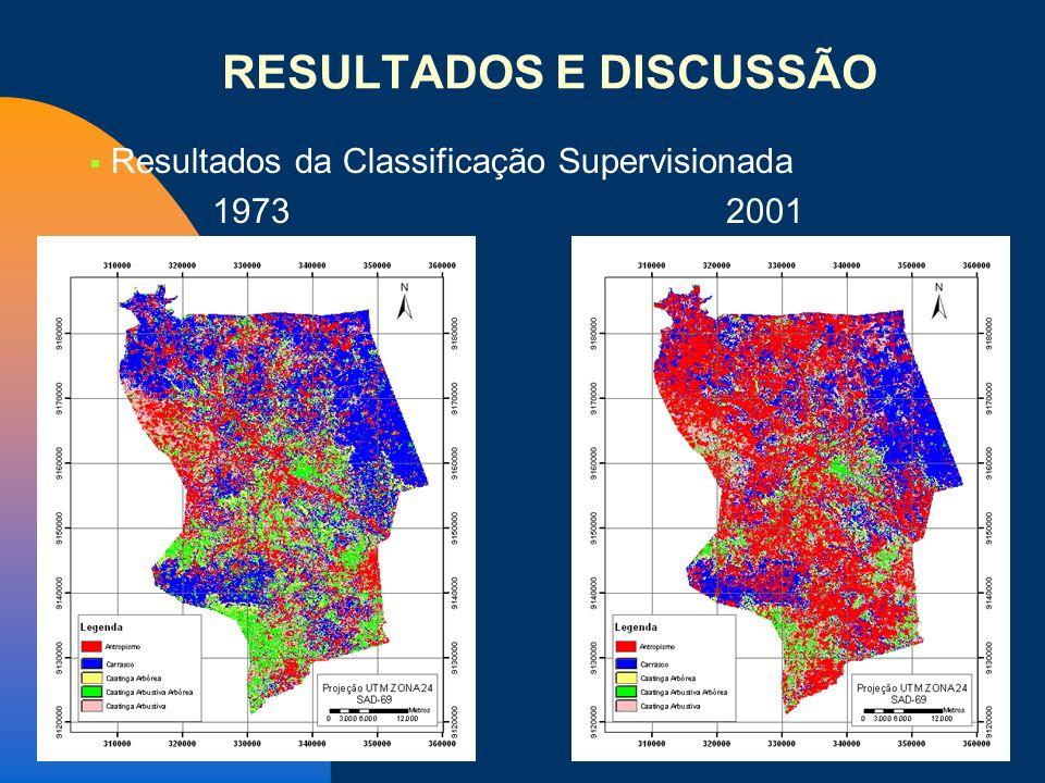 Resultados da Classificação Supervisionada 1973 2001 RESULTADOS E DISCUSSÃO