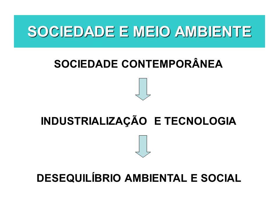 SOCIEDADE CONTEMPORÂNEA INDUSTRIALIZAÇÃO E TECNOLOGIA DESEQUILÍBRIO AMBIENTAL E SOCIAL SOCIEDADE E MEIO AMBIENTE