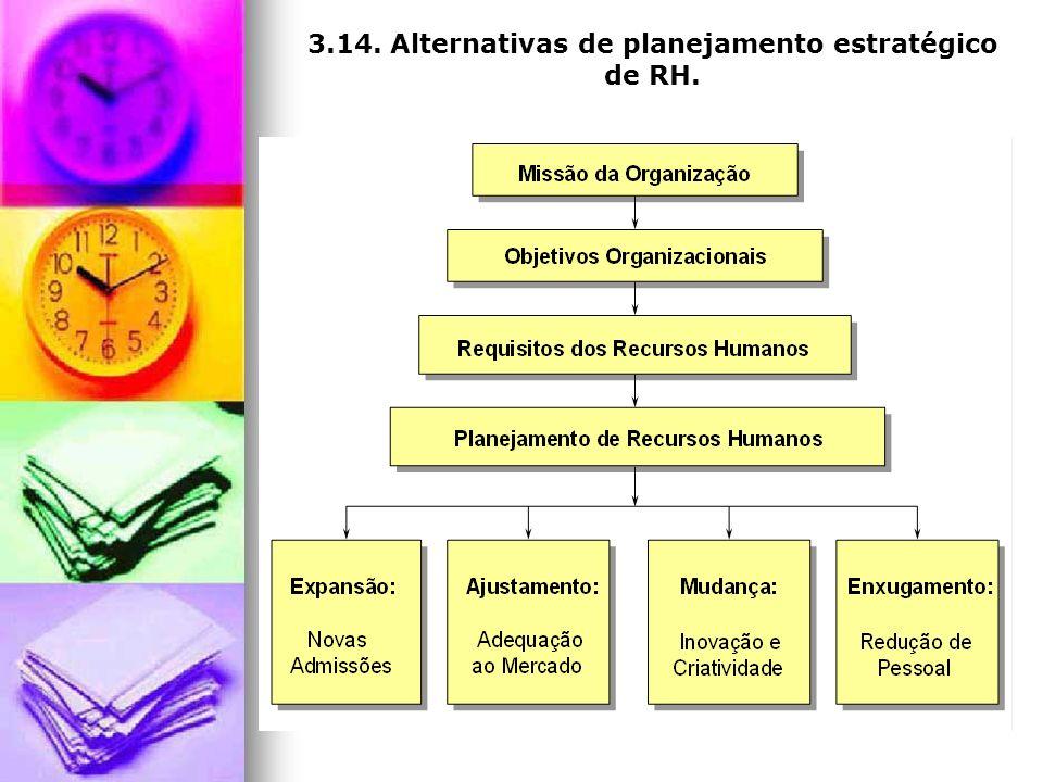 3.14. Alternativas de planejamento estratégico de RH.