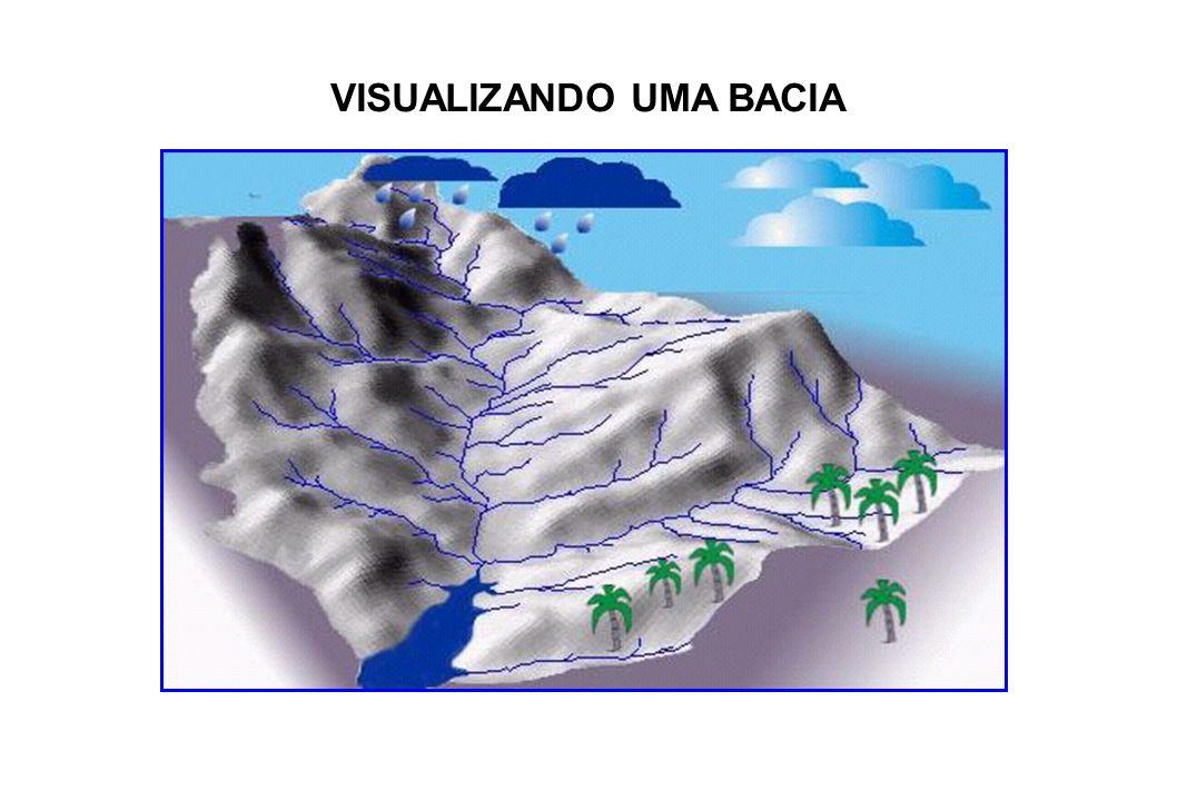 Bacia Hidrográfica Preservada Água de Infiltração e de Escoamento estão em equilíbrio; Juntamente com regime de chuvas, relevo e tipo de solo, formam o leito menor e o leito maior dos rios; Vazão da bacia é regular; Tempo de concentração das águas na seção de controle do rio é equilibrado com os fatores ambientais da bacia hidrográfica; Possibilidades de enchentes são mínimas e se ocorrerem não haverão grandes transtornos; O arrasto de sedimentos é mínimo; A fertilidade do solo é preservada; A produção agrícola nessas áreas estarão asseguradas.