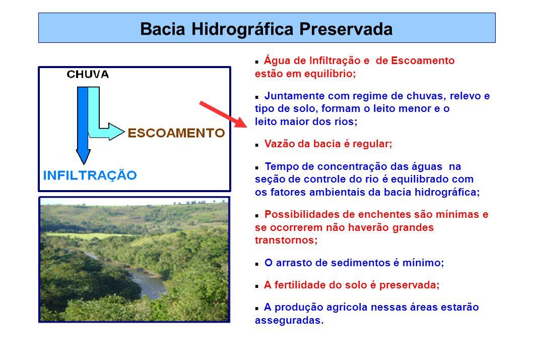Bacia Hidrográfica Preservada Água de Infiltração e de Escoamento estão em equilíbrio; Juntamente com regime de chuvas, relevo e tipo de solo, formam