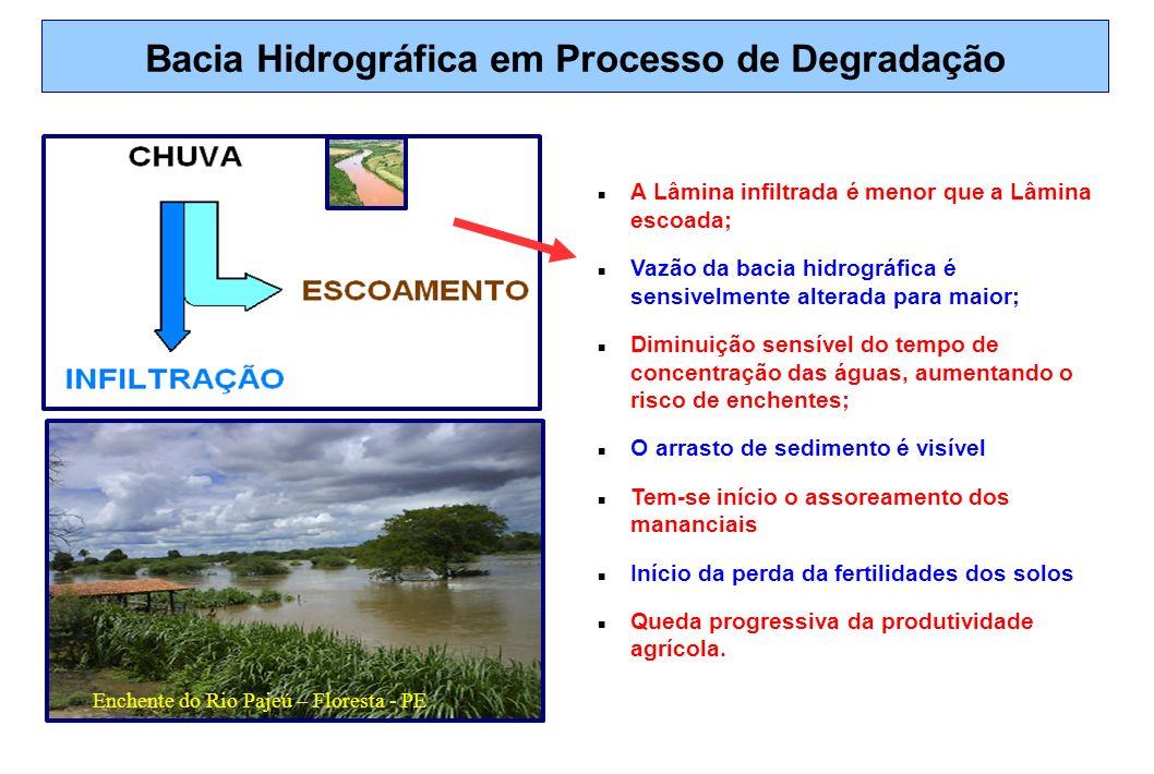 Bacia Hidrográfica em Processo de Degradação A Lâmina infiltrada é menor que a Lâmina escoada; Vazão da bacia hidrográfica é sensivelmente alterada pa