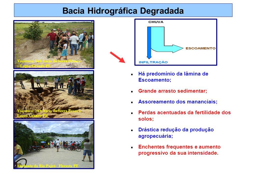 Bacia Hidrográfica Degradada Há predomínio da lâmina de Escoamento; Grande arrasto sedimentar; Assoreamento dos mananciais; Perdas acentuadas da ferti