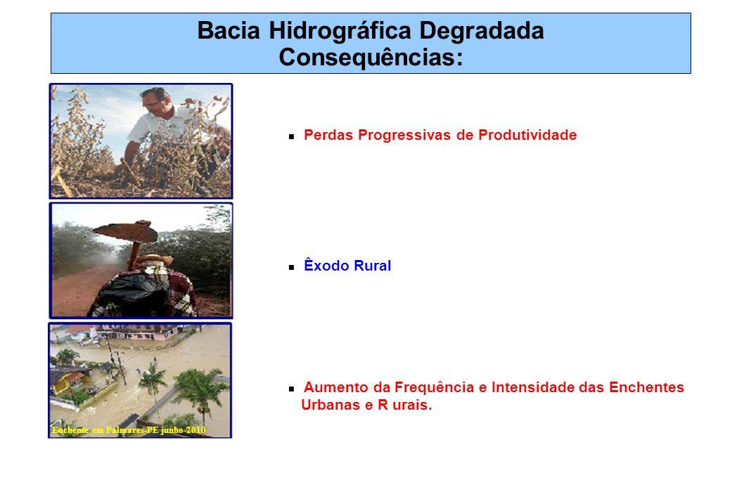 Bacia Hidrográfica Degradada Consequências: Perdas Progressivas de Produtividade Êxodo Rural Aumento da Frequência e Intensidade das Enchentes Urbanas