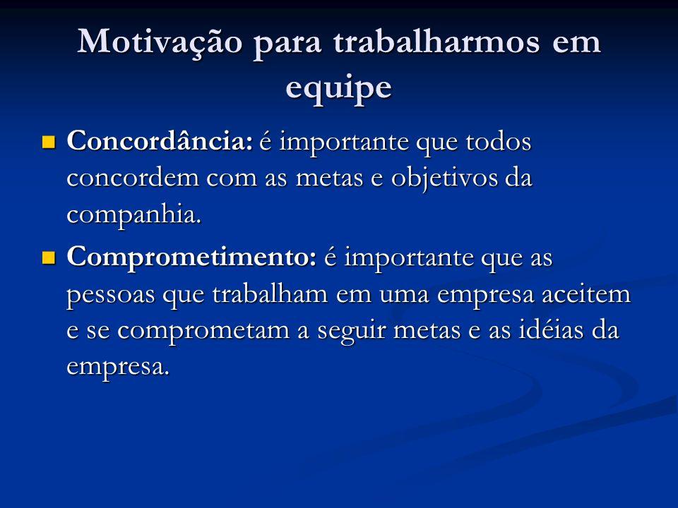 Motivação para trabalharmos em equipe Concordância: é importante que todos concordem com as metas e objetivos da companhia.