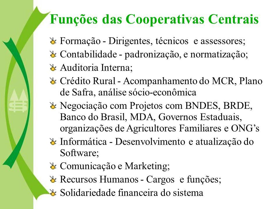Formação - Dirigentes, técnicos e assessores; Contabilidade - padronização, e normatização; Auditoria Interna; Crédito Rural - Acompanhamento do MCR,