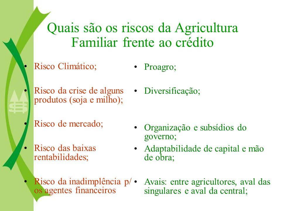 Quais são os riscos da Agricultura Familiar frente ao crédito Risco Climático; Risco da crise de alguns produtos (soja e milho); Risco de mercado; Ris