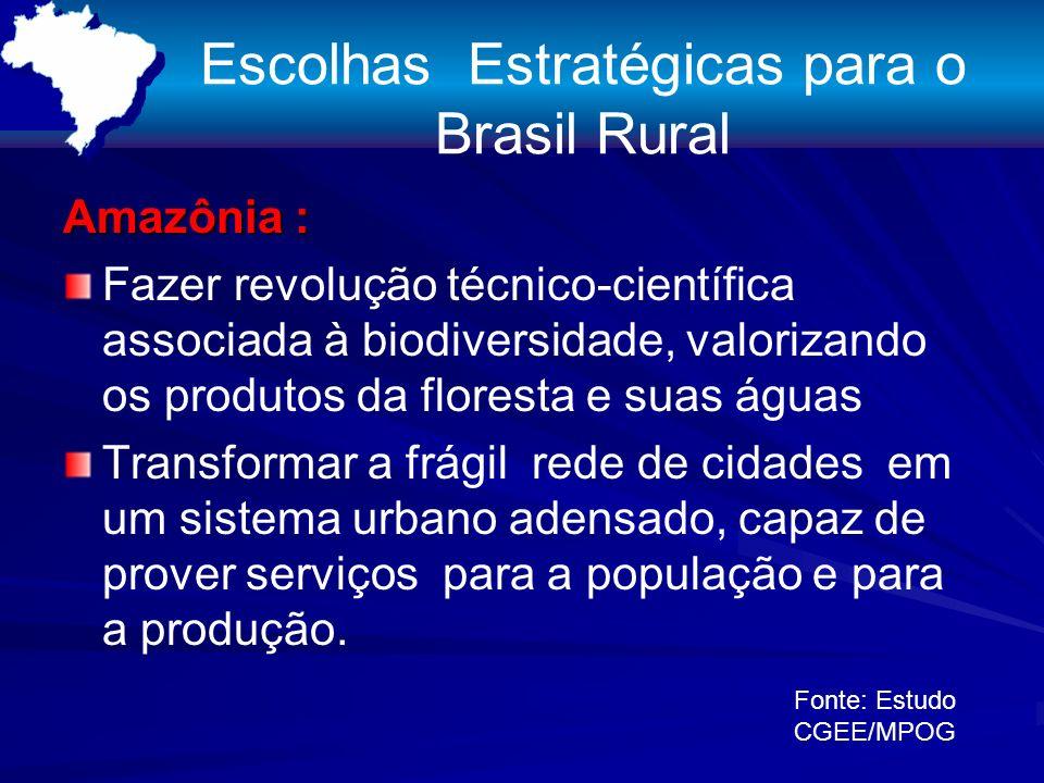 Escolhas Estratégicas para o Brasil Rural Amazônia : Fazer revolução técnico-científica associada à biodiversidade, valorizando os produtos da floresta e suas águas Transformar a frágil rede de cidades em um sistema urbano adensado, capaz de prover serviços para a população e para a produção.